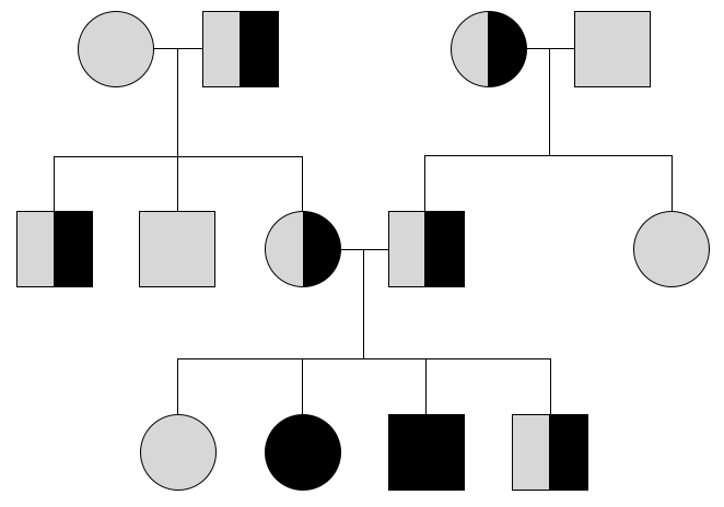 Przykładowy schemat dziedziczenia rodzinnego